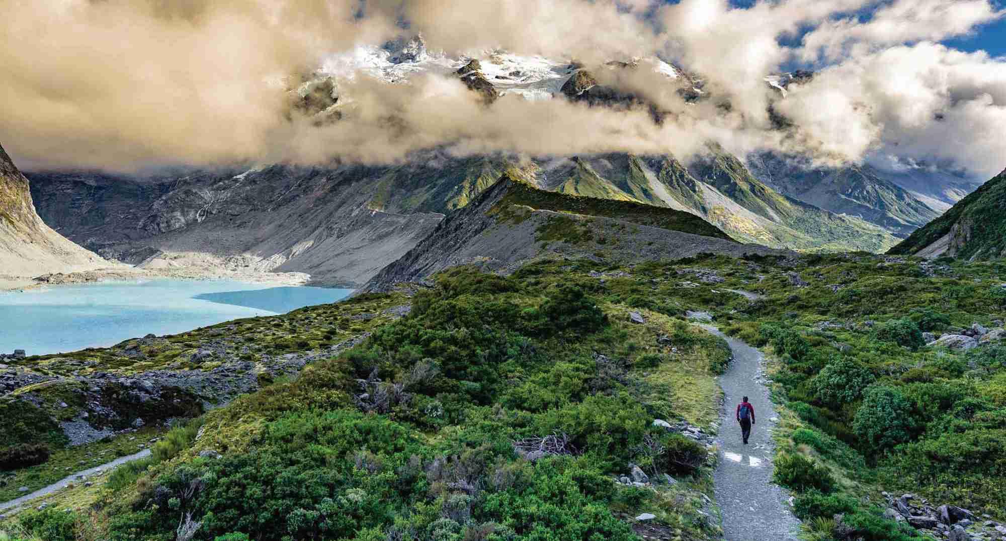 Magnetic New Zealand